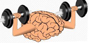 Тренировка мозговой деятельности.